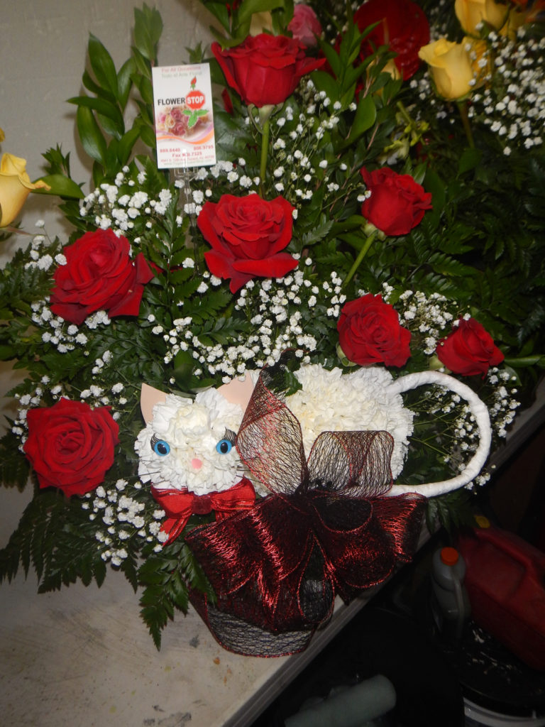 Carnation Cat And Roses Tucson Flower Stop